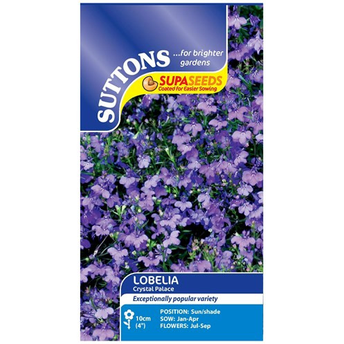 Suttons  Lobelia Scoat Crystal Palace Flower Seeds