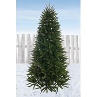 Festive  Pennine Fir Christmas Tree - 8ft